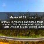 La Iglesia local y las misiones