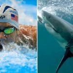 Shark Week: Michael Phelps en el evento televisivo de tiburones