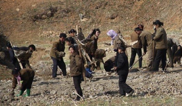 Sequía En Corea Del Norte Afecta A Cristianos Perseguidos