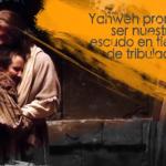 Promesas | Salmos 84:11