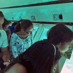 Mundo submarino en aguas caribeñas