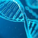 ¿Qué es la genética? – Veracidad News