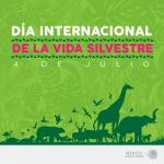Hoy se conmemora el día internacional de la vida silvestre