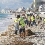 Continúan trabajos de limpieza en playas de Cancún