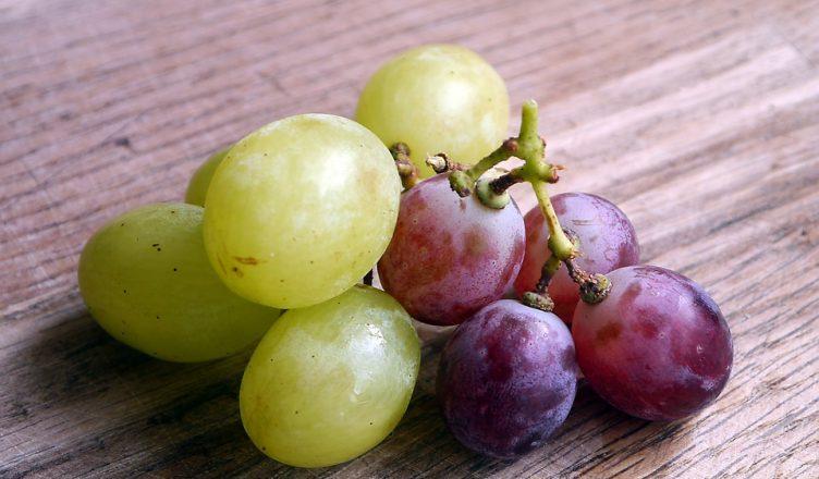 Las Uvas En La Biblia Y Su Significado Veracidad Channel