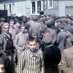 ¿Qué fue el holocausto judío?