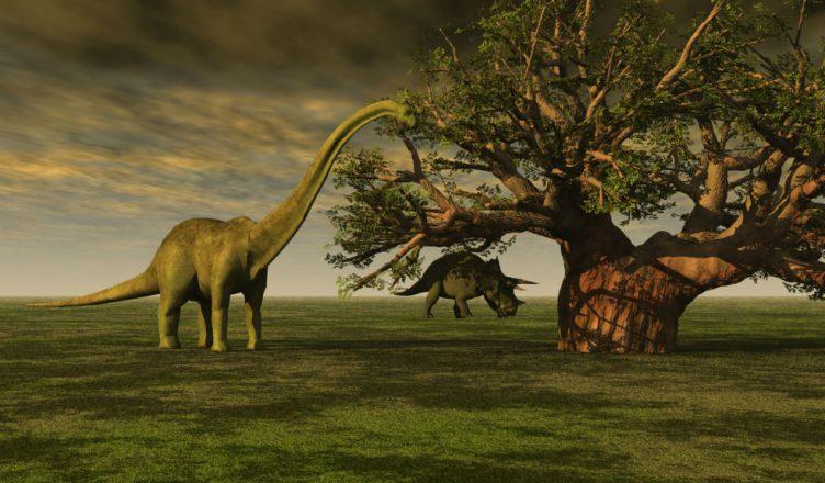 La Biblia Habla Acerca De Los Dinosaurios Especificamente Yo creo en la biblia como la palabra de dios pero se que los humanos no son perfectos. veracidad channel