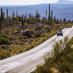 Valle de los Cirios, el mejor santuario de cactáceas en México